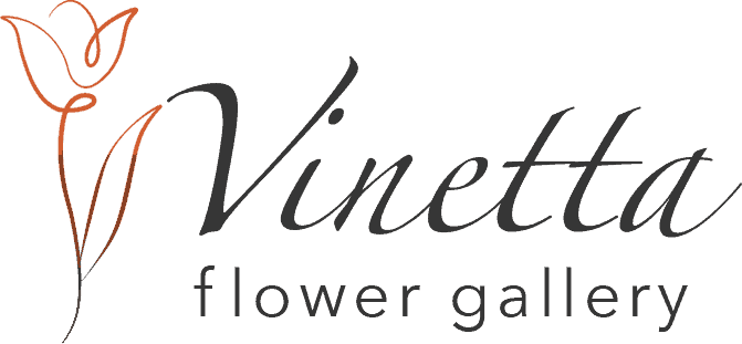 Vinetta flower gallery in Maidstone